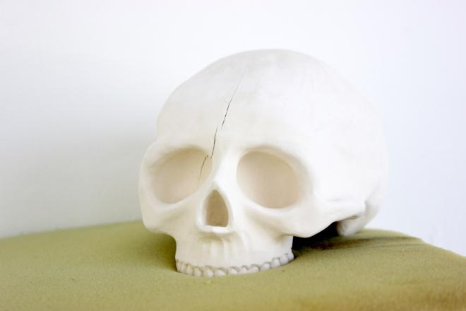 Les crânes 9