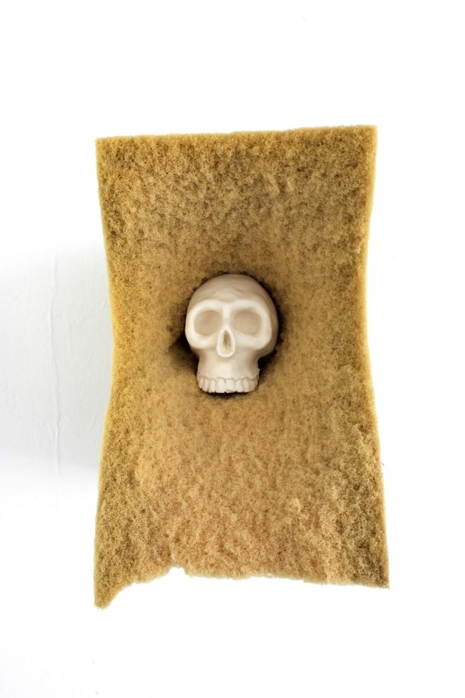 Les crânes 6