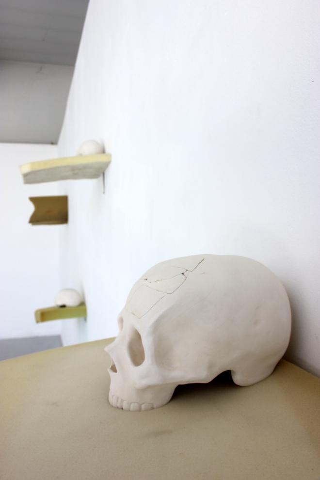 Les crânes 7