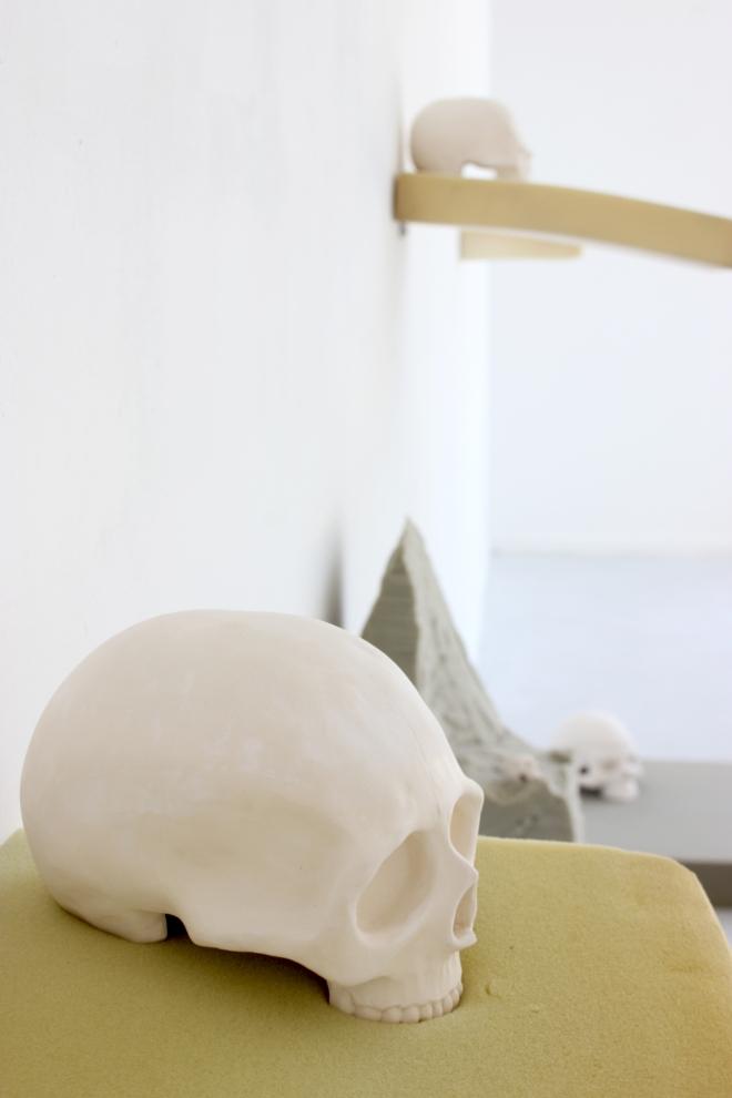 Les crânes 5